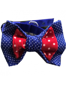 DUEL COLOUR RED AND BLUE POLKA DOT BOW
