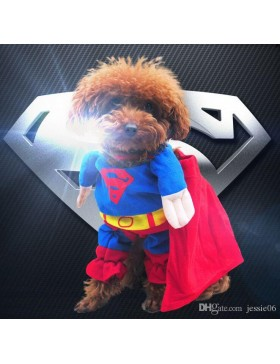 Costume DC Heroes and Villains Collection Pet Costume